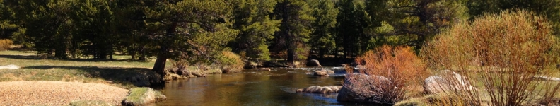 West Fork Carson River 2