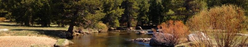 West Fork Carson River 2